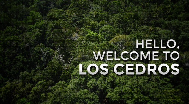 Welcome to Los Cedros